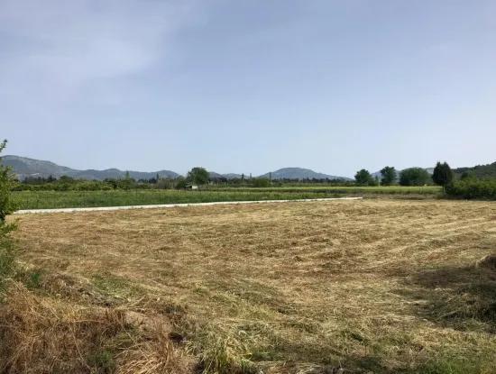 Ein Schnäppchen Farm Zu Verkaufen In Fevziye 2000 M2 Und Oriya
