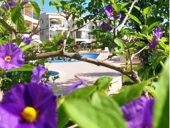 Ein Schnäppchen Komplett Eingerichtete Wohnung Zum Verkauf In Dalaman