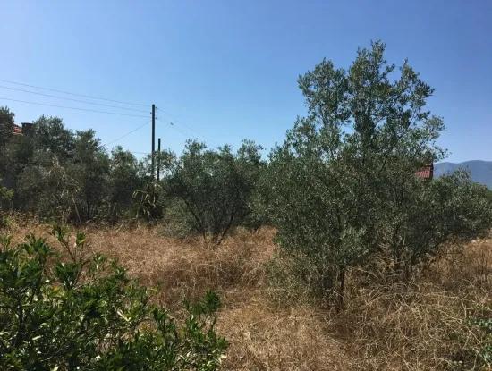 Lake View Land For Sale At Zeytinalani