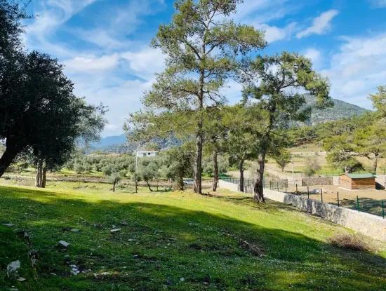 Bargain Land For Sale For Sale In Gokbel