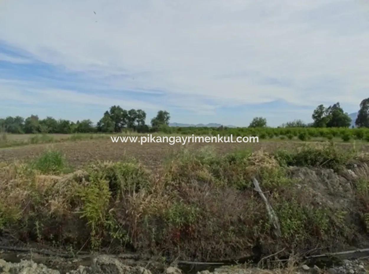 Köyceğiz Toparlar Da 31,175 M2 Satılık Yatırıma Uygun Arazi