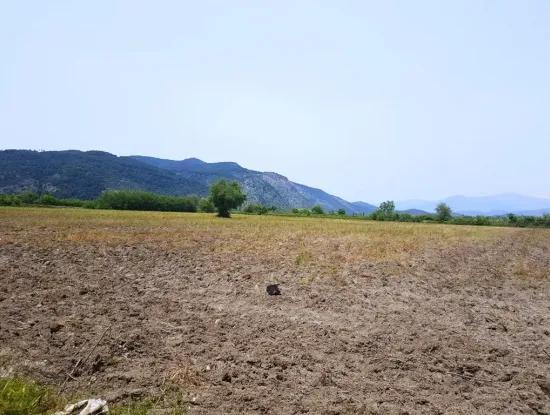 Güzelyurtta Satılık Dağa Sıfır Verimli Arazi