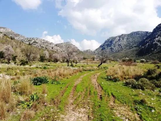 Marmaris Bozburunda Satılık Yatırıma Uygun Tarla