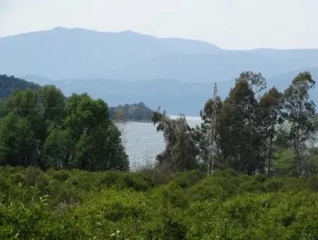 Köyceğiz Yangı Da Satılık Göle Sıfır Büyük Arazi