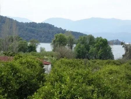 Köyceğiz Yangı Da Satılık Arazi, 120 000 M2 Göle Sıfır